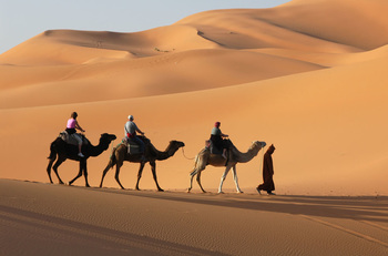 People riding camels in an Egyptian desert